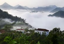 Kinh nghiệm du lịch vườn quốc gia Xuân Sơn cần thiết nhất